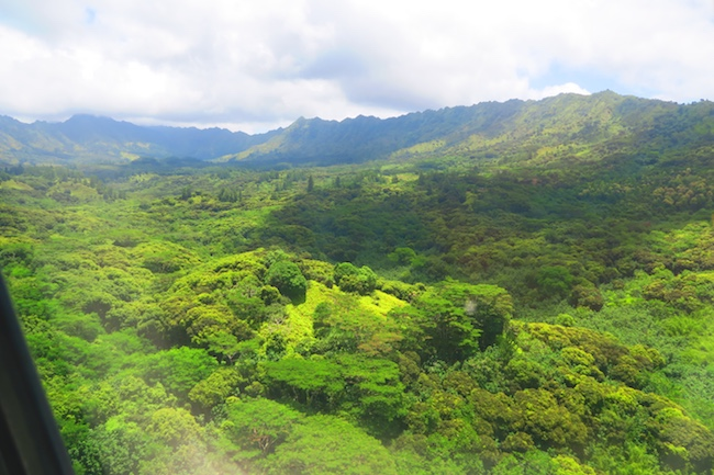 Aerial View Hiva Oa Marquesas Islands French Polynesia airport approach 3