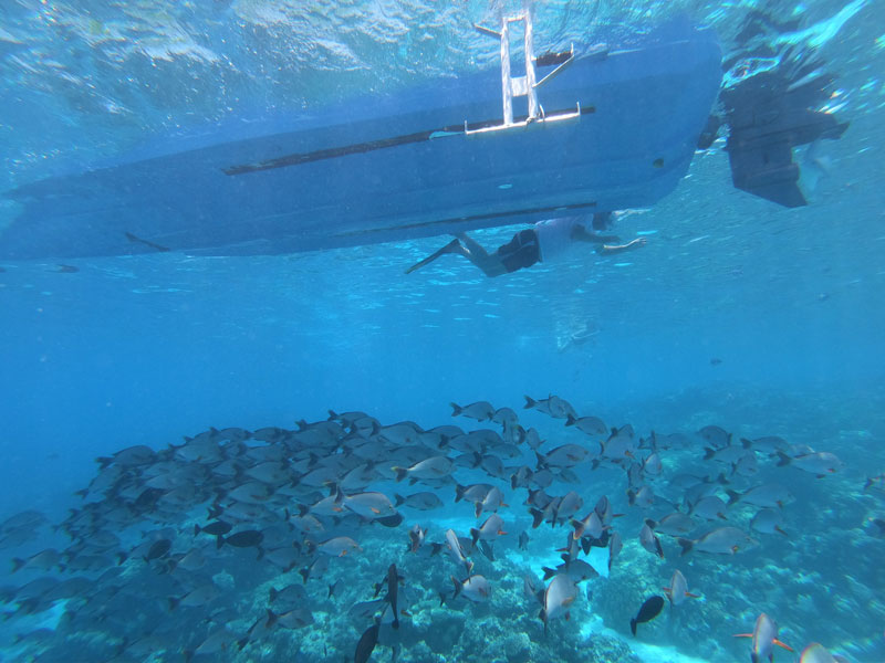 Aquarium Snorkeling tour - Rangiroa Atoll French Polynesia - beneath the boat