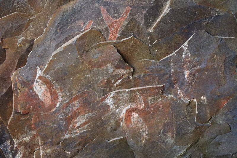 Cave paintings in Cannibal Cave - Easter Island