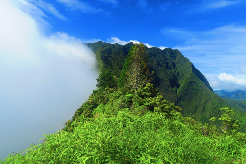 Clouds rolling in - Mount Aorai Hike - Tahiti - French Polynesia
