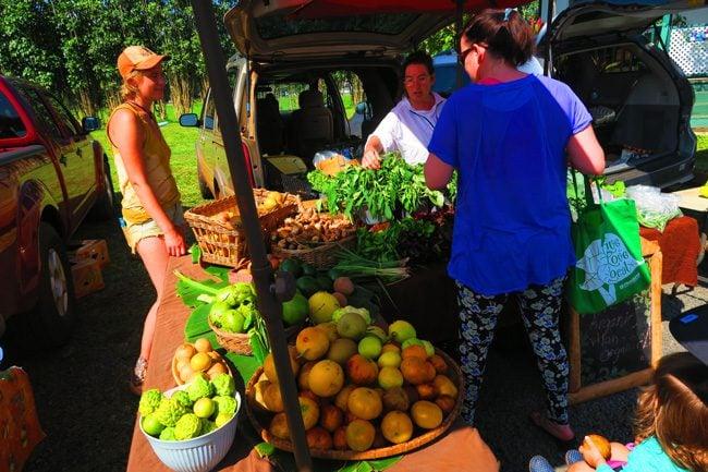 Farmers market in Hanalei - Kauai, Hawaii