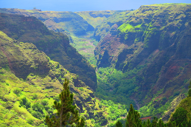 Grand Canyon Nuku Hiva Marquesas Islands French Polynesia