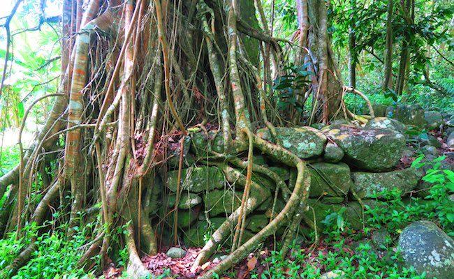 Hakaui Valley Vaipo Waterfall hike ancient village Nuku Hiva Marquesas Islands French Polynesia