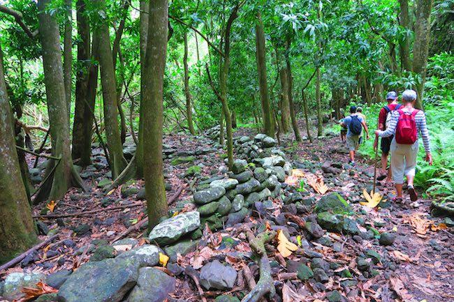 Hakaui Valley Vaipo Waterfall hike walking through rainforest Nuku Hiva Marquesas Islands French Polynesia