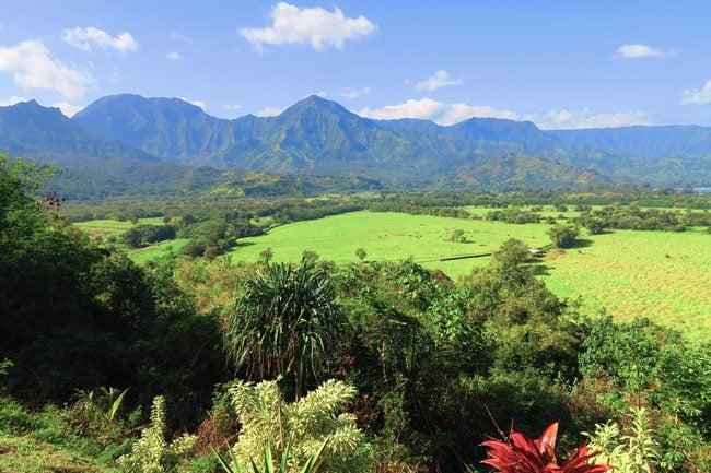 Hanalei Scenic Lookout - Kauai, Hawaii