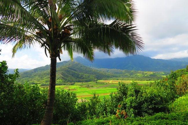 Hanalei Valley Lookout - Kauai, Hawaii
