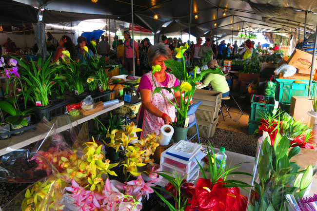 Hilo Farmers Market - Big Island Hawaii_4