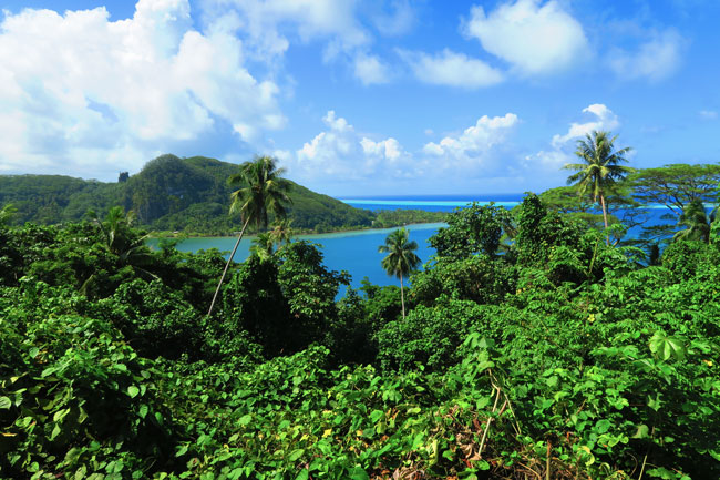 Hotopu Bay Raiatea Island French Polynesia