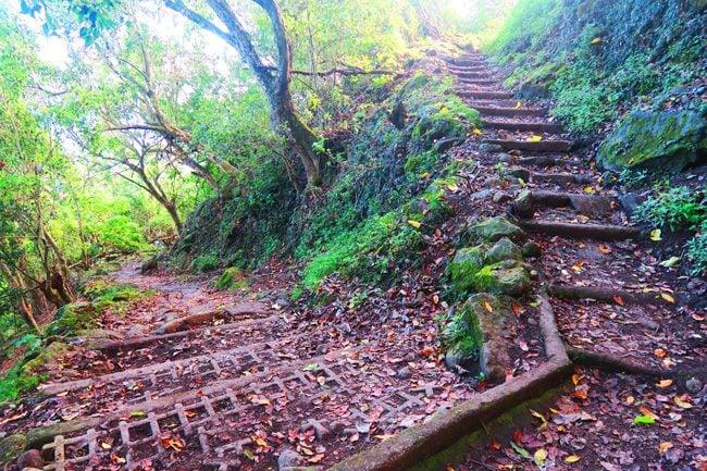 Kalaupapa Trail - Molokai Hike Hawaii