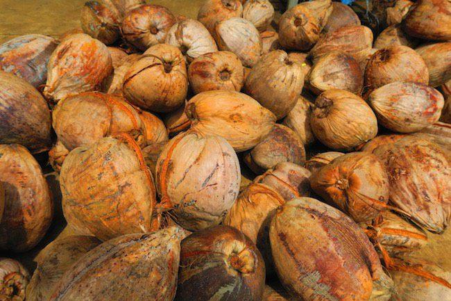 Maketi Fou Apia main market Samoa - coconuts