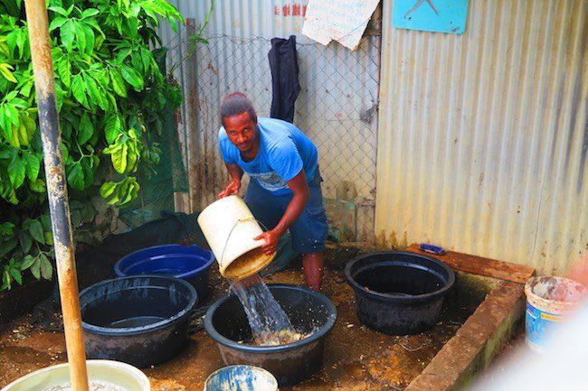 Making Kava Drink In Vanuatu - Washing