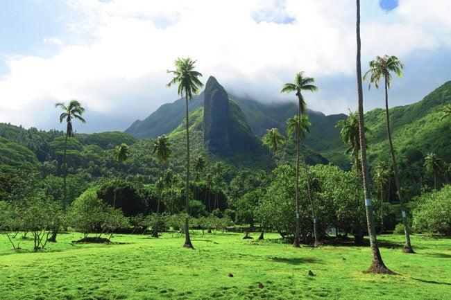 Massive cliff Raiatea Island French Polynesia