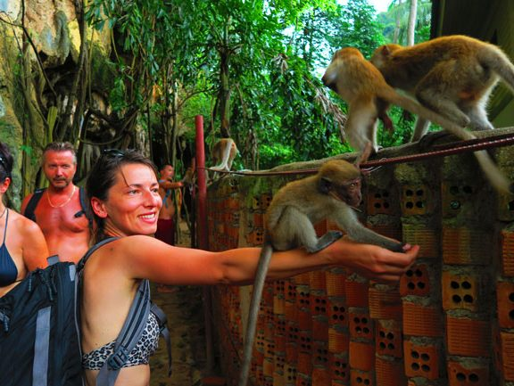 monkeys-in-railay-beach-thailand-3
