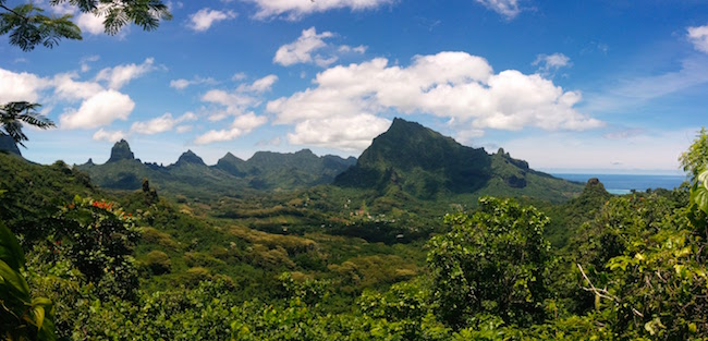 Opunoho Valley moorea panoramic view french polynesia