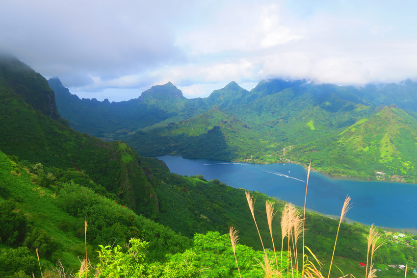 Opunohu Bay from Mount Rotui Hike - Moorea - French Polynesia