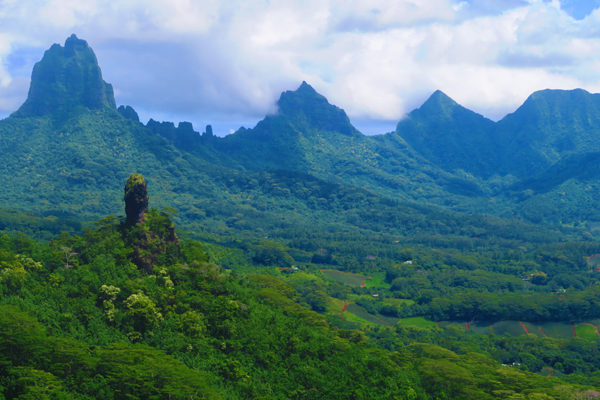 Opunohu Valley - Moorea - French Polynesia - Hike