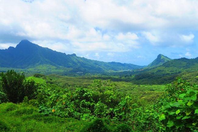 Panoramic view from belvedere Raiatea Island French Polynesia