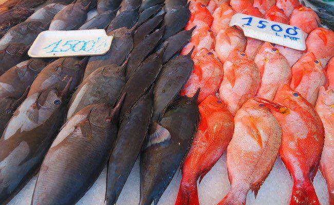 Papeete Market Tahiti French Polynesia - fish