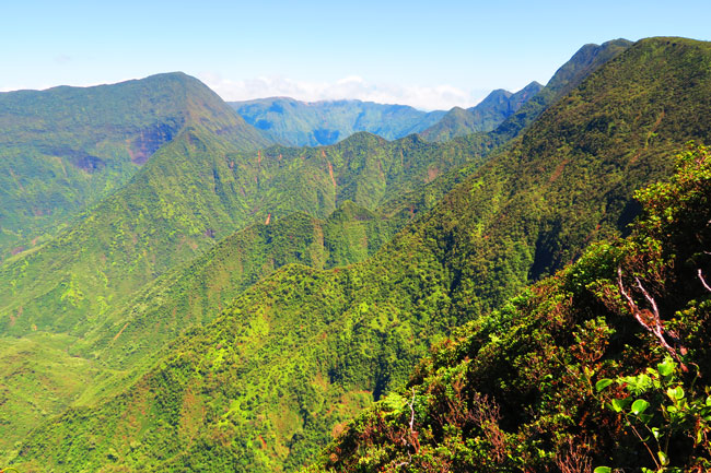 Pelekunu Valley Overlook - Pepeopae Trail - Molokai Hawaii 2