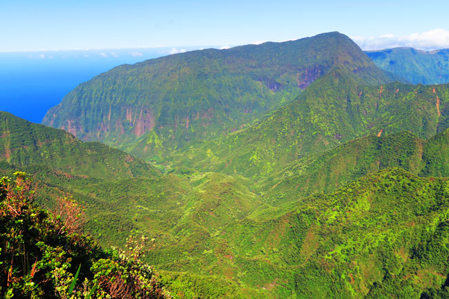 Pelekunu Valley Overlook - Pepeopae Trail - Molokai Hawaii 3