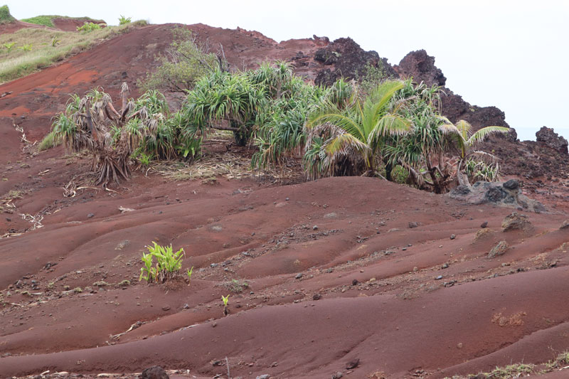 Pitcairn Island - red soil earth