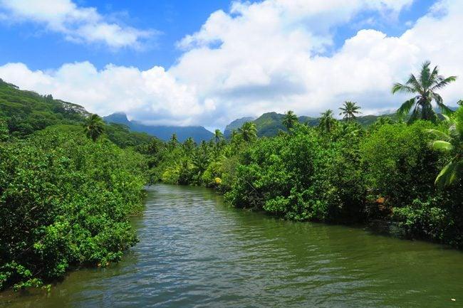 Raiatea Island French Polynesia river