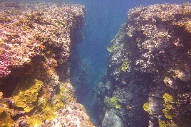Snorkeling-Off-Tanna-Evergreen-Resort-In-Vanuatu-Chasm