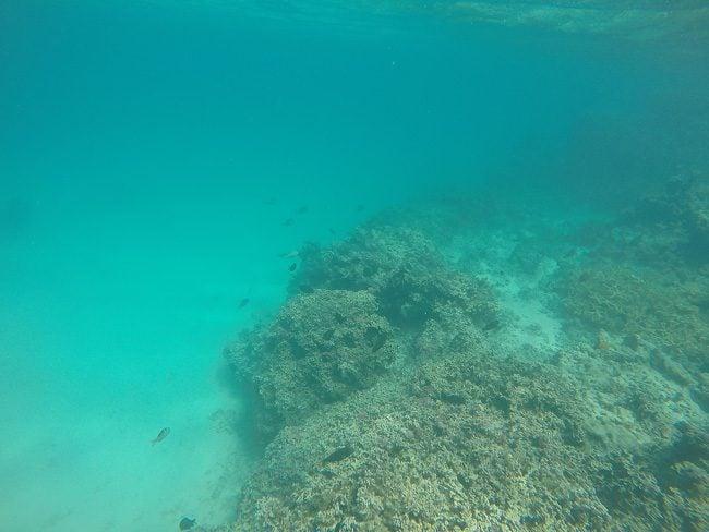 Snorkeling matira beach bora bora french polynesia