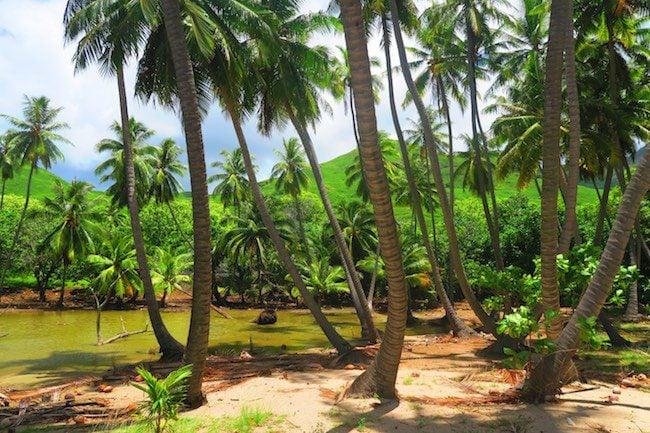 Tahuata Day Trip Hiva Oa Marquesas Islands French Polynesia Hanamoenoa Bay palms