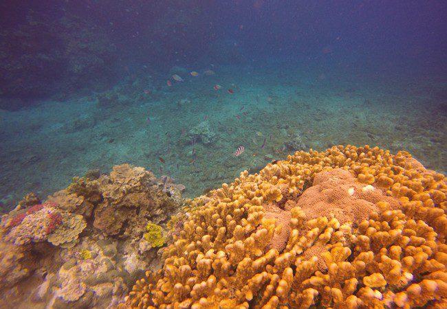 Tanna Island Vanuatu Blue Hole