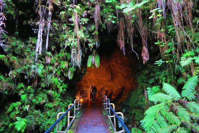 Thurston Lava Tube Entrance - Hawaii Volcanoes National Park Big Island