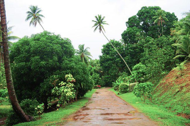 interior of tahaa french polynesia island tour