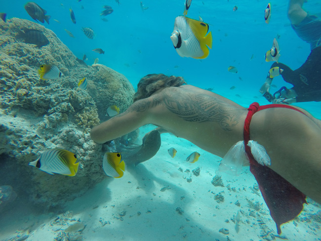 lagoon tour bora bora french polynesia didi getting moray eel