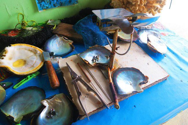 pearl farm tour tahaa french polynesia tools
