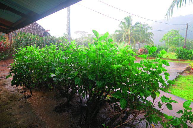 rain storm at chez pascal pension tahaa french polynesia