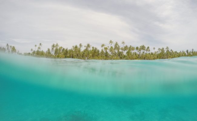 snorkeling-PK9-beach-fakarava-view-of-beach