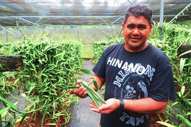 vanilla grower tahaa french polynesia