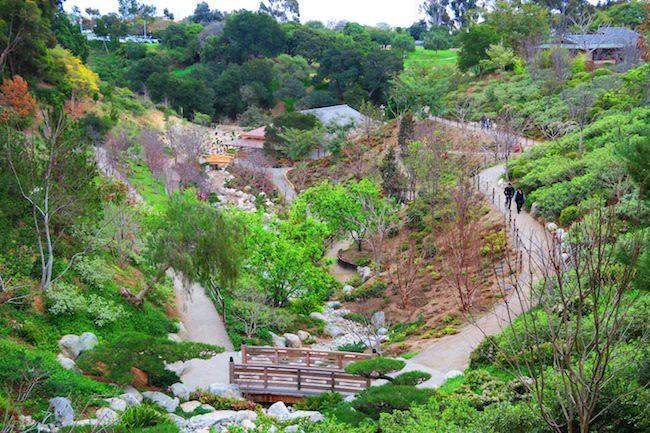 3 days in san diego san diego travel itinerary for Japanese friendship garden