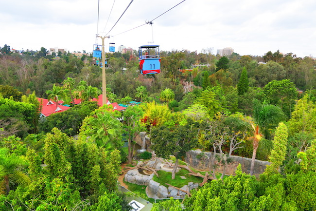 San Diego Zoo Skyfari tram
