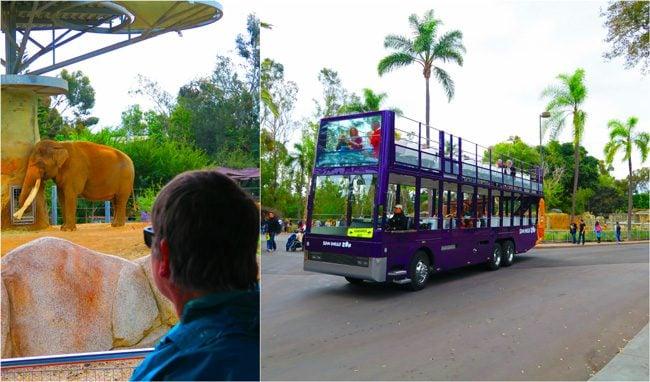San-Diego-Zoo-tour-bus