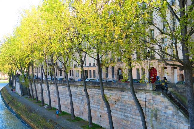 romantic spot on ile saint louis paris