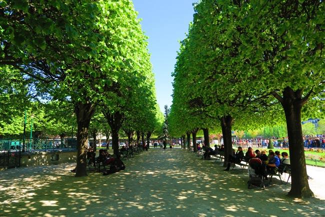 Square Jean XXIII Paris park outside notre dame