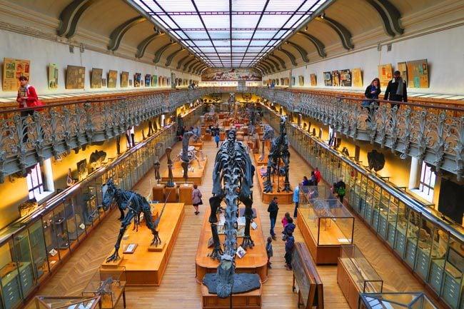 Jardin des Plantes Paris museum natural history