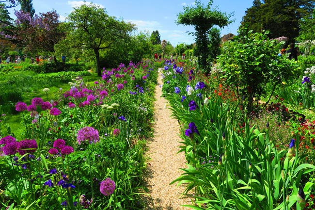 Monet garden Giverny flower row