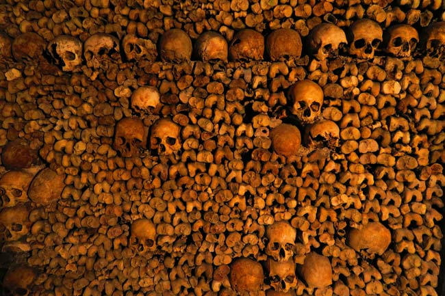 paris catacombs bones and skulls