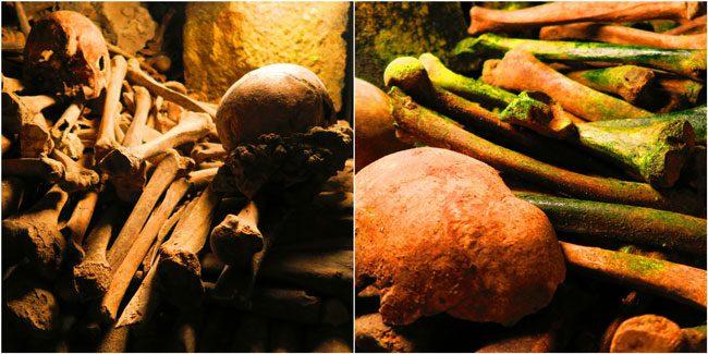paris catacombs bones closeup