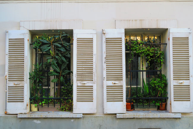 classic Paris windows