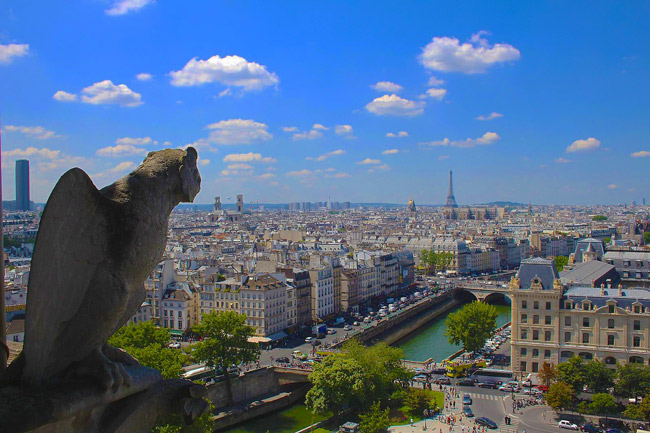 Notre Dame Tower Paris panoramic view