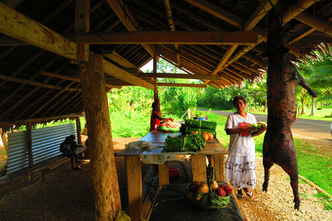 Buying fruit in Espiritu Santo Vanuatu