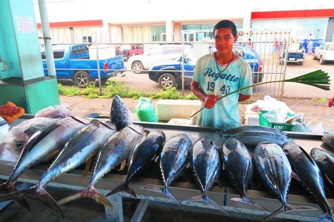Fish Market Apia Samoa Tuna 2